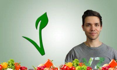 vegane Proteine